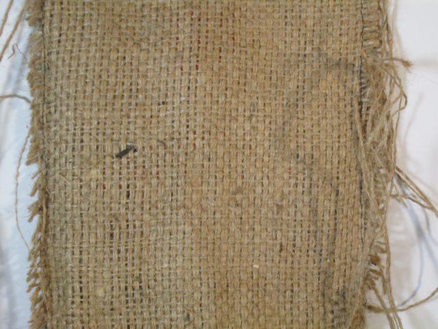Астильба: уход в открытом грунте осенью, как подготовить к зиме