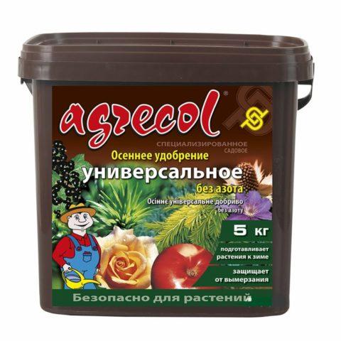 Как правильно подготовить лилии к зиме на Урале, в Подмосковье, в Сибири